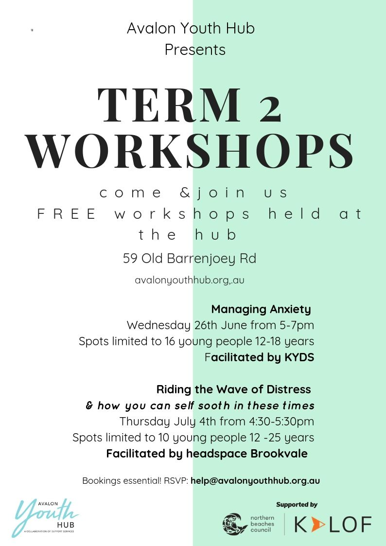AYH Term 2 Workshops